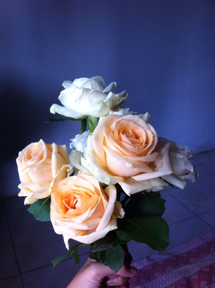 Beautiful roses for a beautiful one