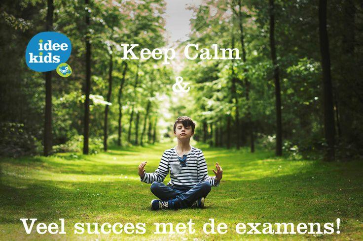 Idee Kids wenst alle kinderen en ouders veel succes met de examens!