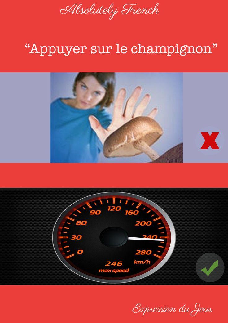 """""""Il faut appuyer sur le champignon sinon on sera en retard à la gare."""" #appuyersurlechampignon #expression #française #french #français #france #learnfrench #apprendrelefrançais"""