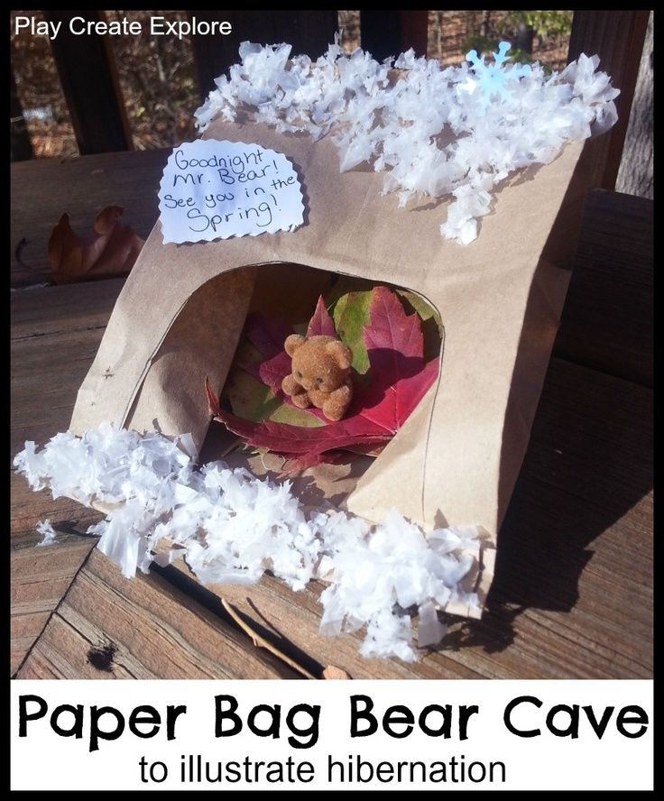 paper bag book report project
