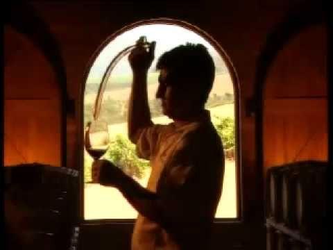 Video about the wine estate of the famous golfer Ernie Els in Stellenbosch South Africa./Video over het wijn domein van de beroemde golfer Ernie Els in Stellenbosch Zuid Afrika.