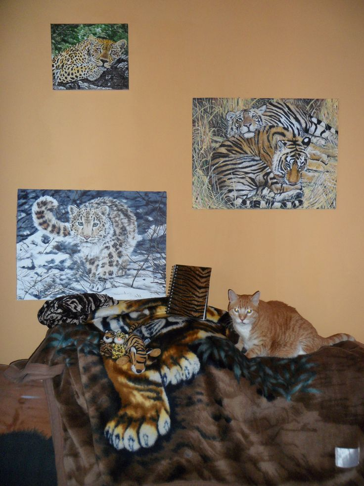 Panthers and tigers :)