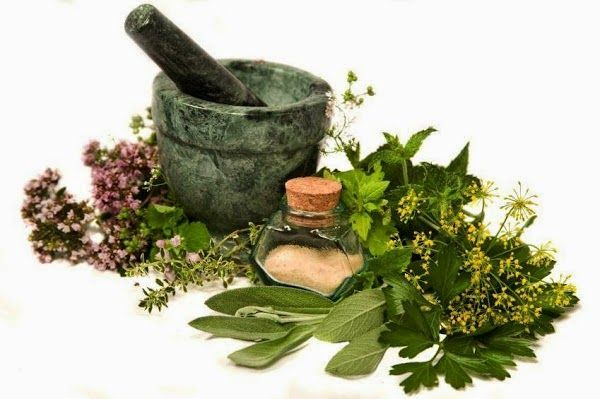 How to choose a traditional herbal medicine for pregnant women is very important because pregnant women susceptible to the negative effects of drugs. Negative effects and harm pregnant women which focuses on the impact that would occur to the fetus