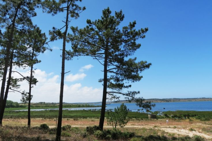 Lagoa Santo André Alentejo Portugal
