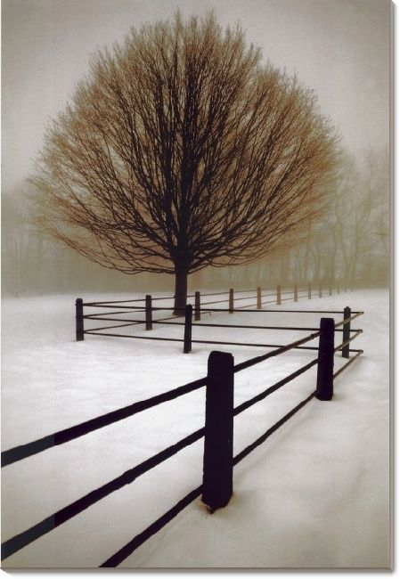 The silence of a snow-hushed landscape, in black, white and brown for a minimalistically focused atmospheric effect. This is a mystical piece that will look perfect with any home decor and comes in a