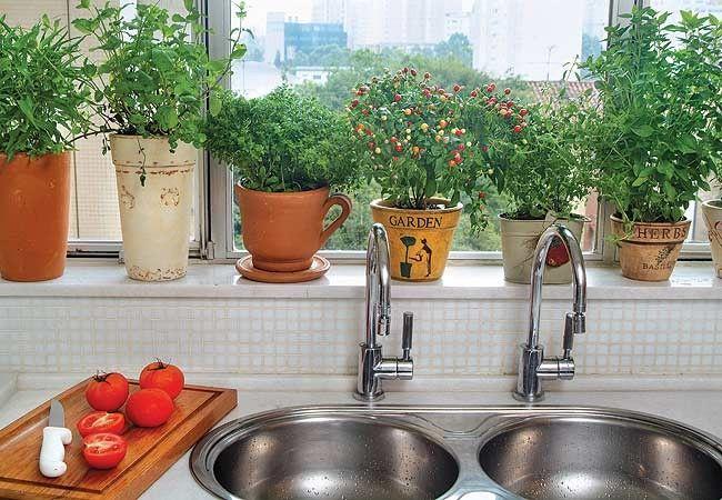Um cantinho de temperos é sempre bem-vindo na cozinha, aproveite a janela pra isso! Nesse local suas plantinhas vão receber bastante luz, o que é ideal para esse tipo de planta. (Foto: Evelyn Müller)