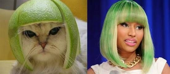 Top 12 Funniest Who Wore It Better Memes