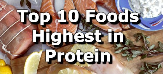 Top 10 Foods Highest in Protein You Can't Miss