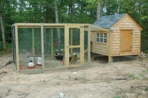 How To Build A Chicken Run DIY Project This step by step tutorial of how to build an enclosed chicken run DIY project in a great way for chickens to be able to wander while being protected from predators. The run is 8'x15′. The box area of the run is 8'x12′ and there is about …
