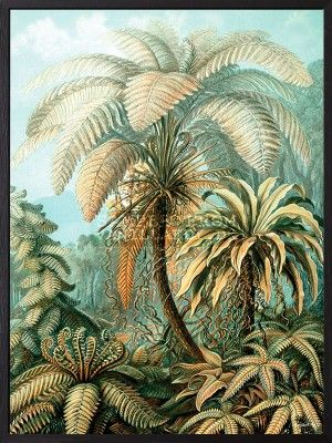 POSTER PALM HEAVEN (3-PACK) #PSC120