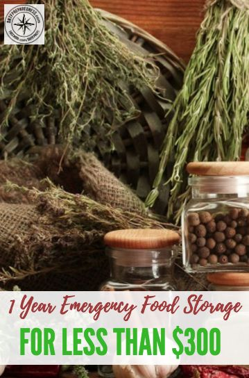 1 Year Emergency Food Storage For Less Than $300 - I think I speak for us all when I say we all lack a decent emergency food supply. Some of us have some but nothing that could warrant us going off grid and surviving on our stockpiled food.