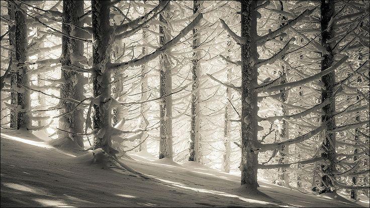 Benoit Exbrayat - Frozen