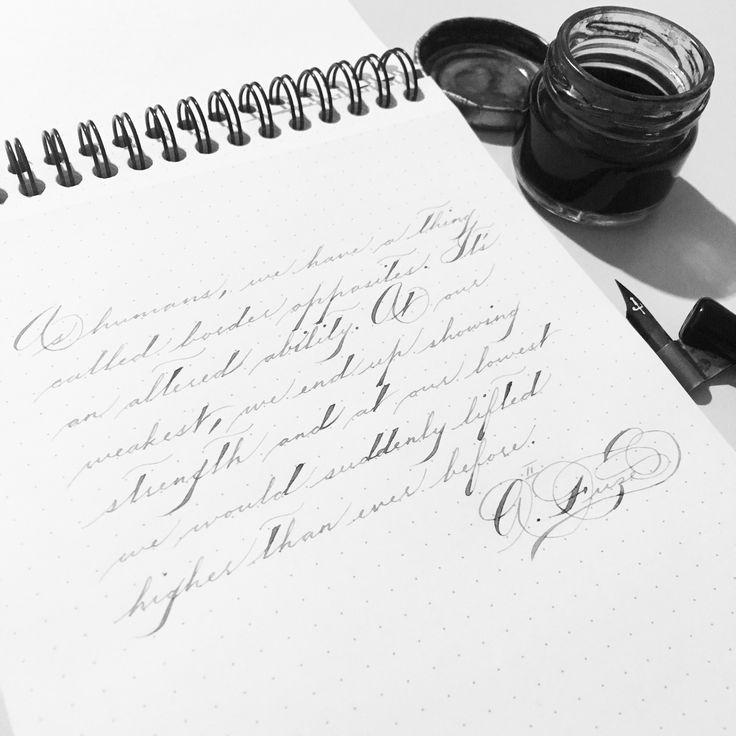 Spencerian Script Calligraphy Pinterest Calligraphy