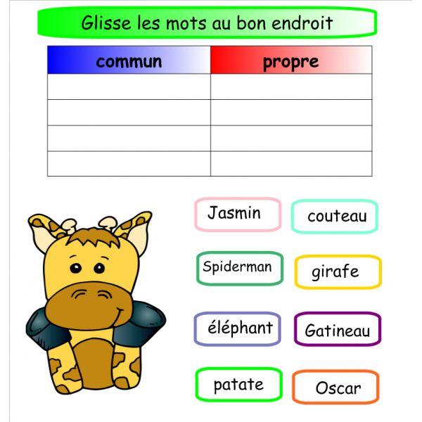 4 activités Notebook sur le nom commun/propre français ressource pédagogique tni tbi école primaire