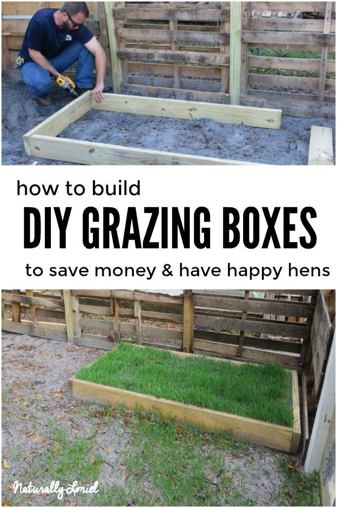 DIY grazing boxes save you money