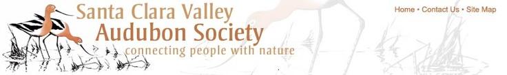 SCVAS: Santa Clara Valley Audubon Society