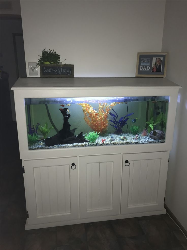 25 best ideas about fish tank cabinets on pinterest for Fish tank paint