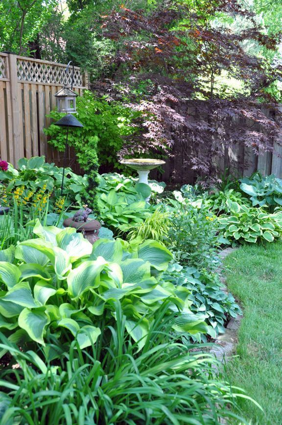 Ways To Decorate A Small Back Garden Ideas No Grass Only In Kennys Landscaping D Shade Garden Design Shade Garden Small Back Gardens