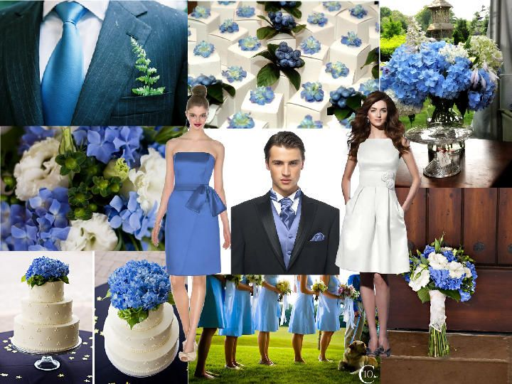 Cornflower Blue and Hydrangea Wedding