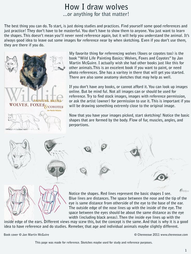Dating A Player Advice And Consent Drawings Of Wolves