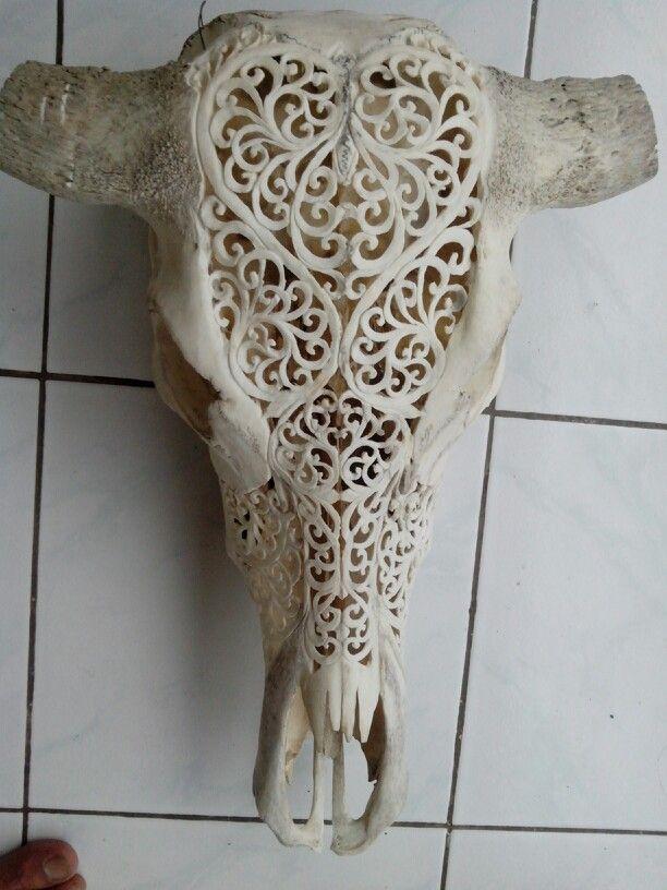 Bun kedis-bufallo skull,  sale completed with horn $80 +shipping.   http://www.facebook.com/Harmonyart