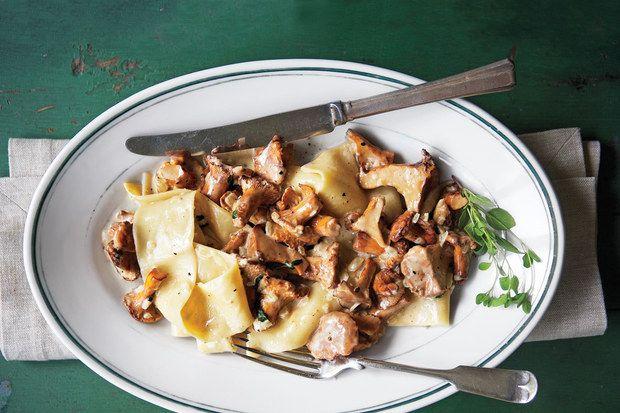 fricassee of chanterelles chanterelles hirsheimer recipes chanterelle ...