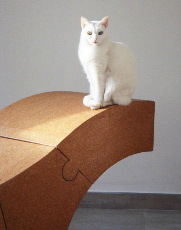 chaise cork and cat!