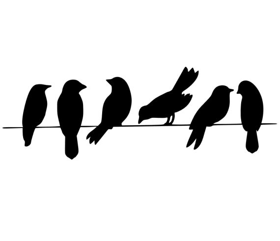 Birds on a Wire  svg file