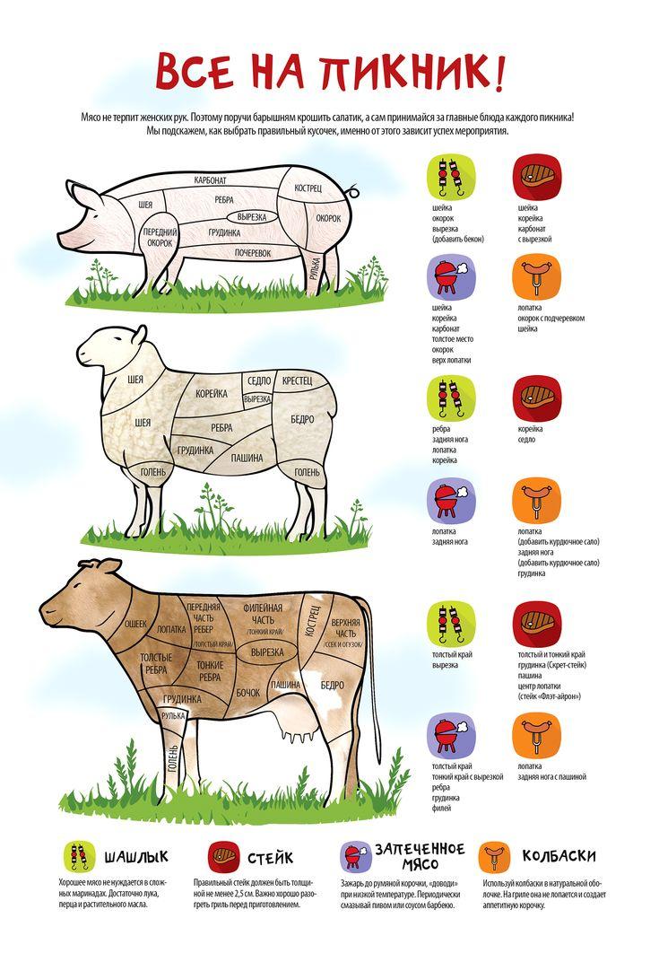 Инфографика. Как правильно выбрать мясо для запекания, шашлыка, стейка и сосисок. Всё на пикник!