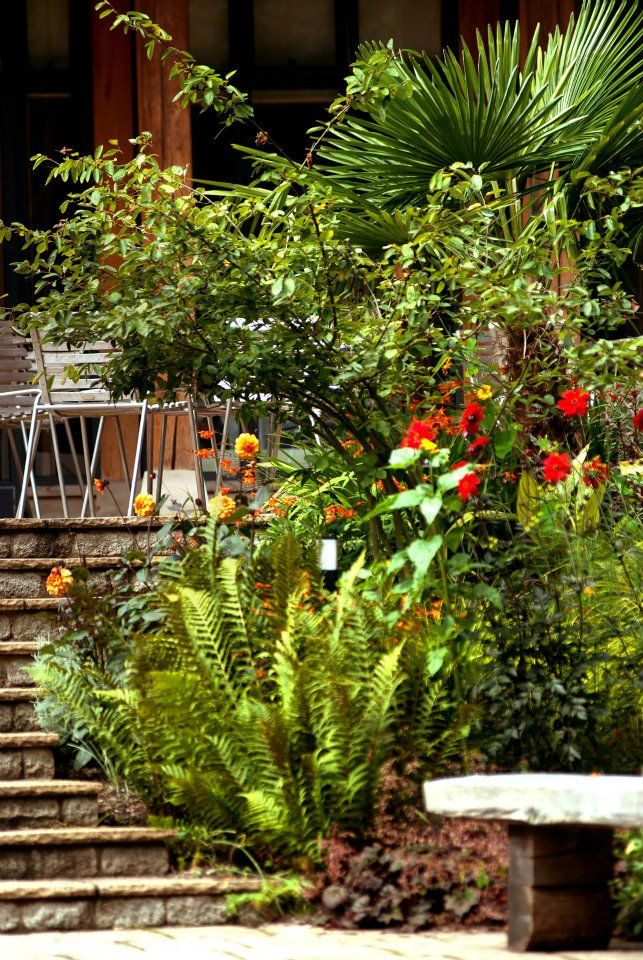 Our terrace is great for viewing our extensive gardens.