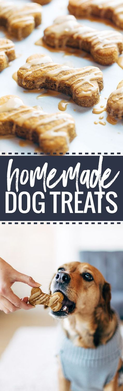 Homemade Dog Treats - 5 ingredient wholesome treats for your pup!   pinchofyum.com