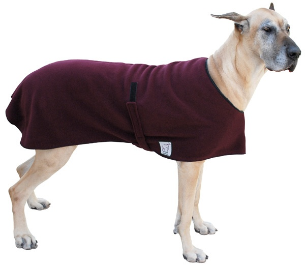 Great Dane Spring/Fall Coat: Great Danes, Danes Jackets, Doggie Boards, Spring Fal Coats, Danes Spring Fal
