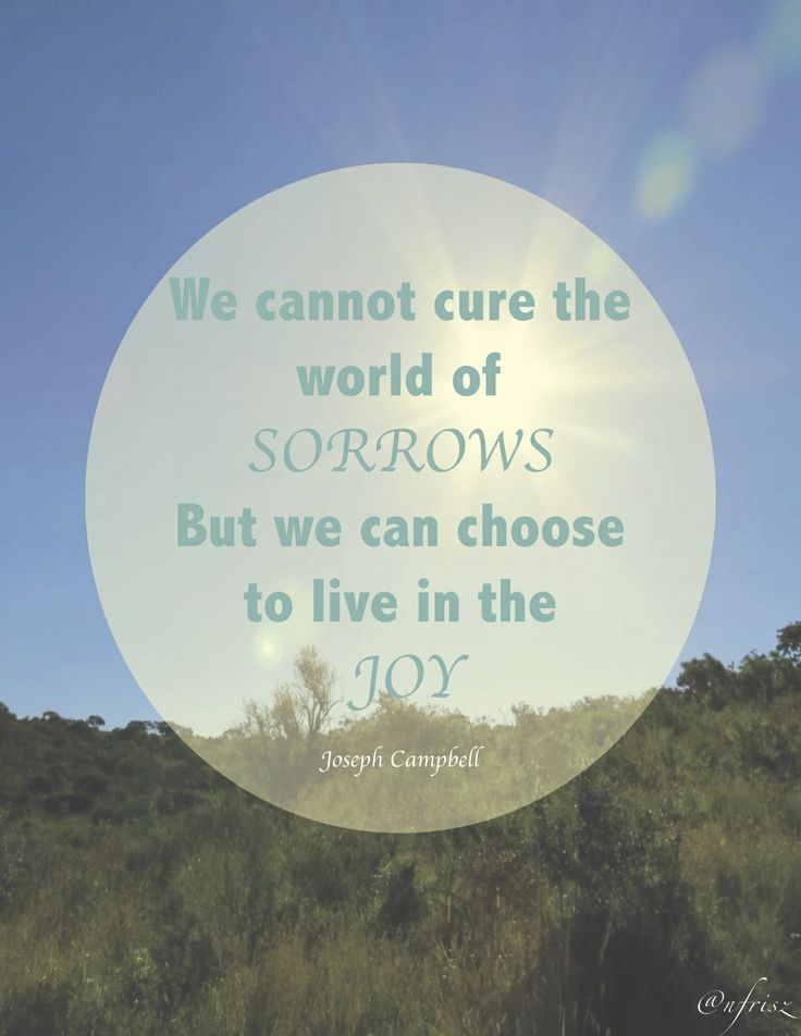 """""""We cannot cure the world of sorrows but we can choose to live in the joy"""" Joseph Campbell  -@nikki striefler Frisz"""