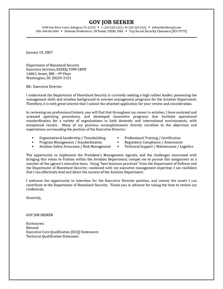 government resume cover letter examples