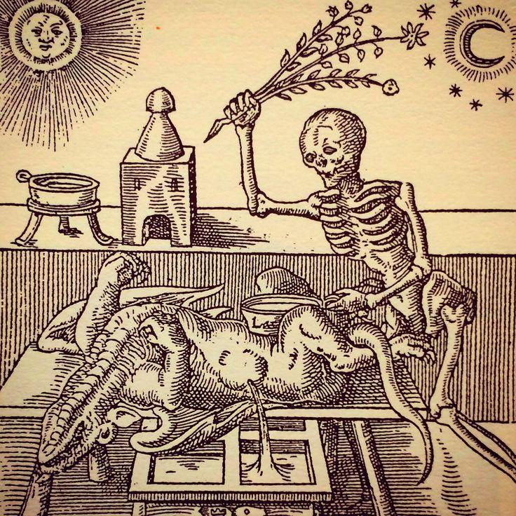 Alchemy:  Woodcut from Theosophical view for #Alchemy, by Leonhardt Thurneysser zum Thurn, 1574.  An Alchemy artwork.
