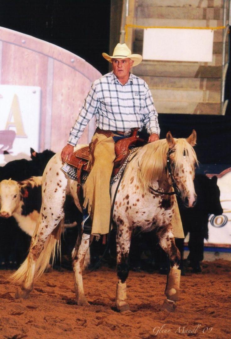 Cayuse Chatta Lena - Australia - Appaloosa stallion at stud