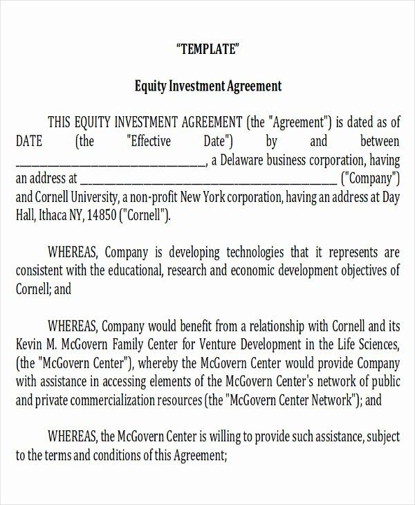 equity investment agreement contract