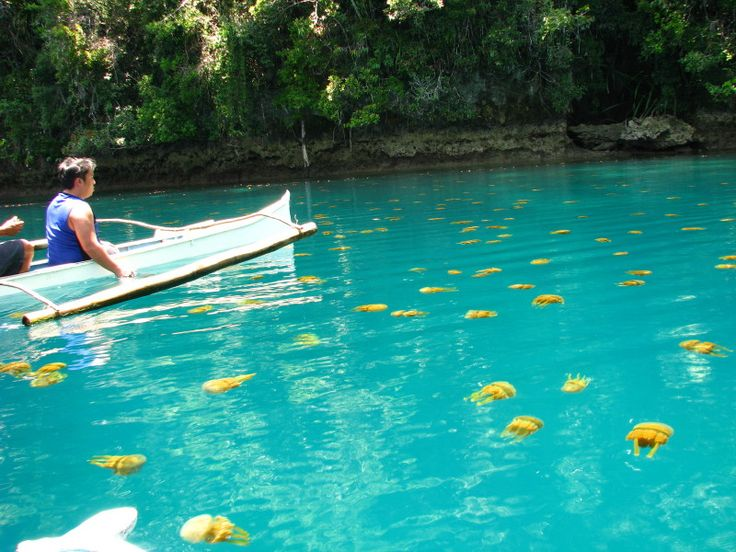 17 Best Images About Philippines On Pinterest The Philippines Clear Spring And Lakes