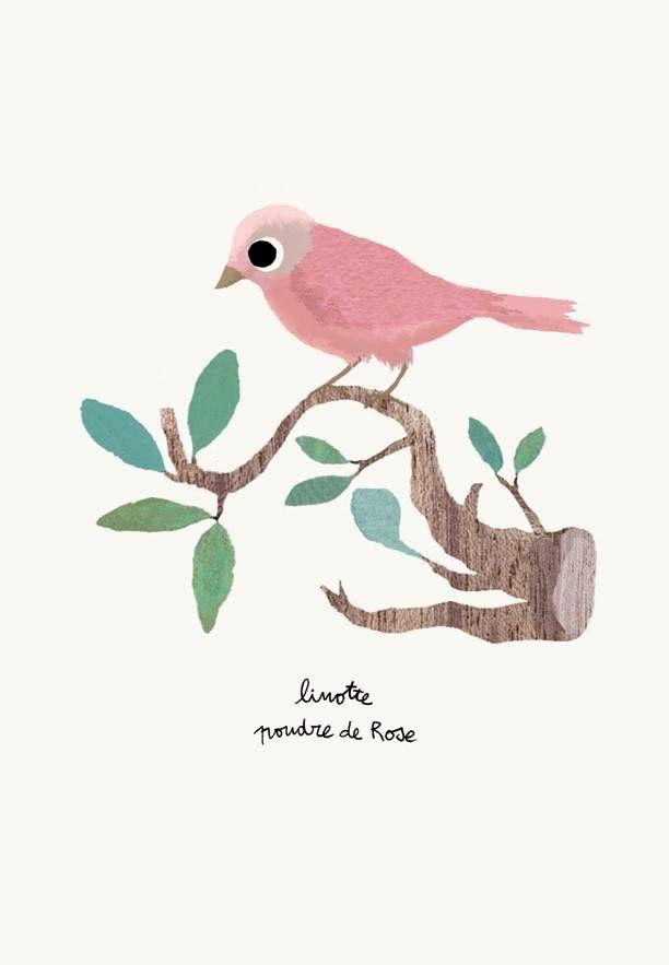 Tinou le joli Senoville kaart roze vogel