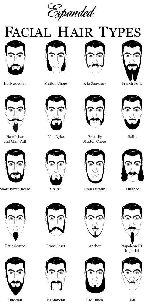 Terrific 1000 Ideas About Chin Beard On Pinterest Bearded Men Beards Short Hairstyles For Black Women Fulllsitofus