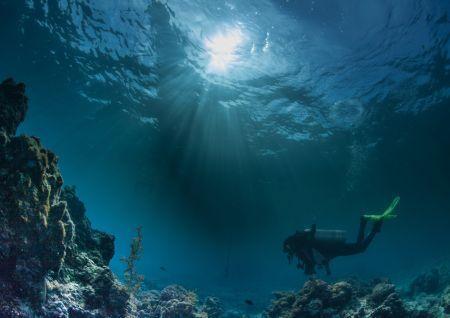 Diving in Baikal