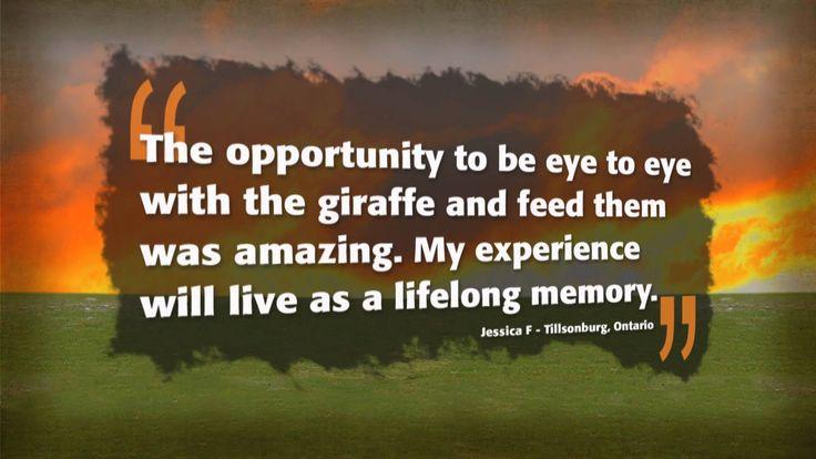 """Wake Up Wild"" An Exclusive Safari Adventure! #AfricanLionSafari"