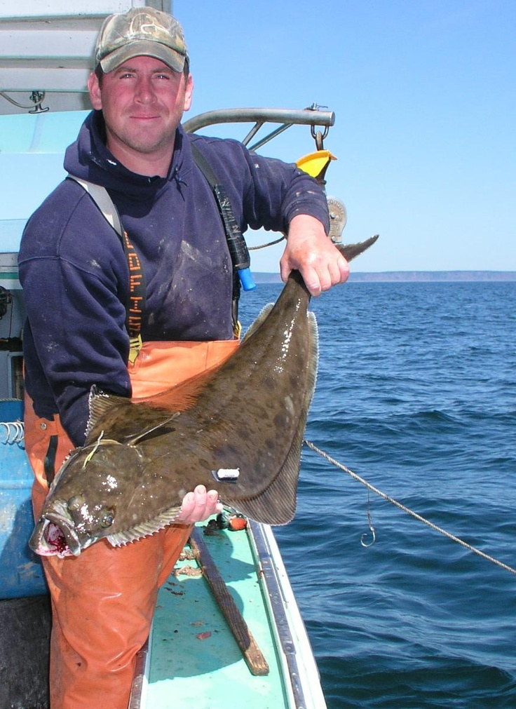 1173 best images about fishing woman fishing funny fish for Halibut fishing alaska