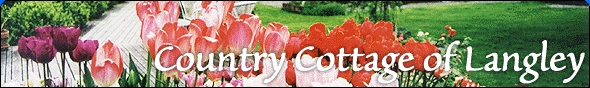 Whidbey Island Bed and Breakfast - Country Cottage of Langley B Accommodations