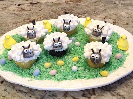 lamb, cupcake, herd
