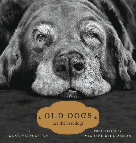 Old Dogs. Have this book & it's a family favorite.  #worcestercountyhumanesociety #wchs