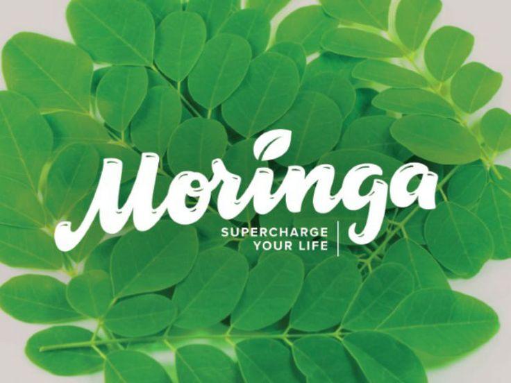 Moringa by Typemate