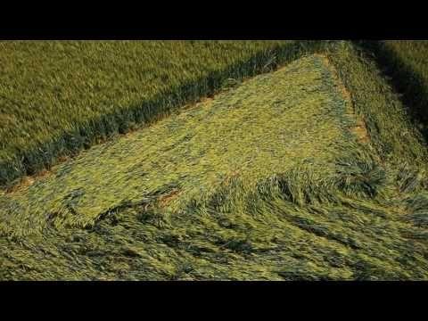 668 best Crop circles ALIENSSS images on Pinterest