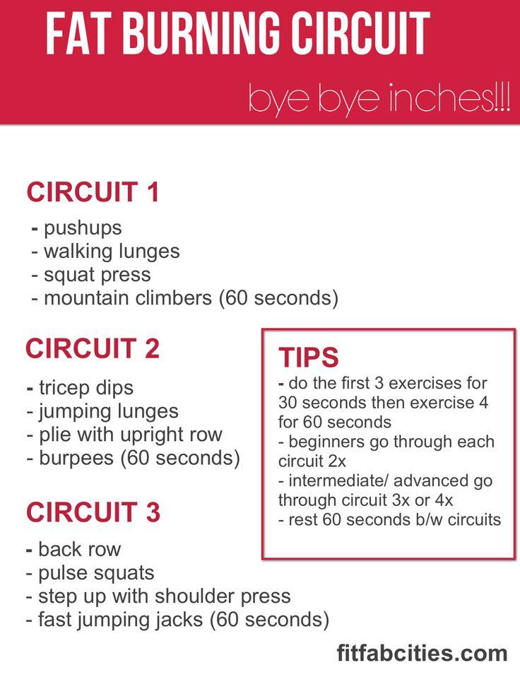 Latihan Sirkuit (Circuit Training), Konsep dan Contoh