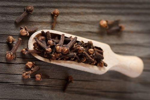 Chiodi di garofano per olio essenziale